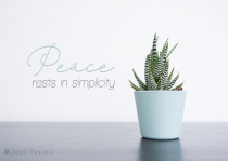 Peace Rests In The Simple Things