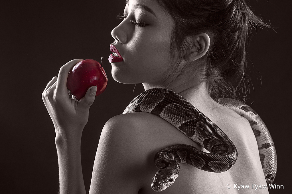 Apple and Feeling