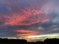 Pink blazing sky