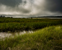 Stormy Wetlands