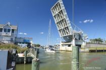 Tilman Island Bridge Opening...