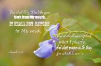 Scriptures Flower