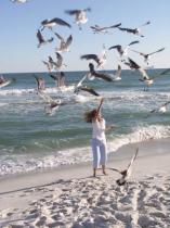 Seagulls is G.G. Leger