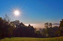 Morning Fog on the Landscape