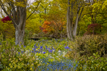 Spring time at the Botannical Gardens