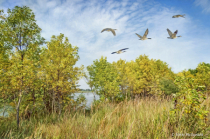 Early Autumn at Walnut Creek Lake