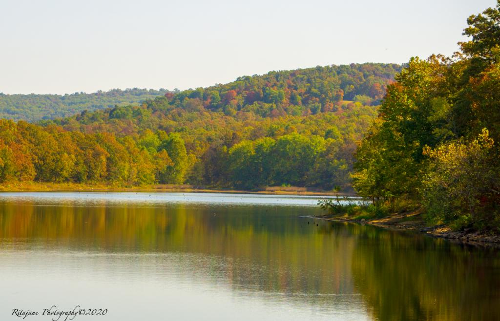 Fall Colors - ID: 15858775 © Rita Jane Smith