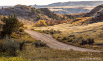 Afternoon glow in the badlands
