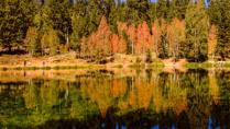 Fishing at Aspen Mirror Lake