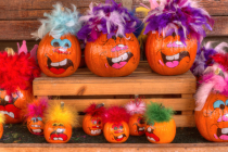 Crazy Pumpkins