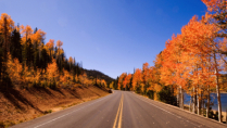 Autumn colors on road trip to Navajo Lake