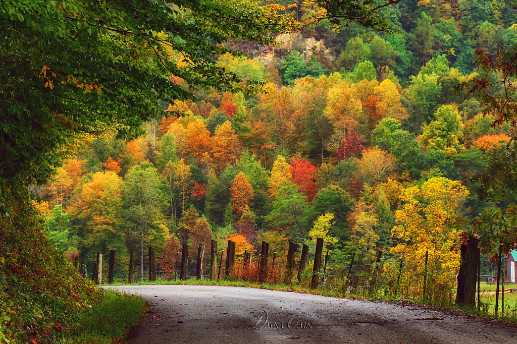 Colors Up Around The Bend