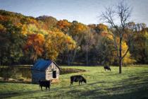 Gillis Farm - Carroll County, Maryland
