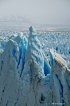 Perito Moreno, detail