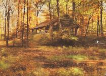 Autumn At Voorhees 2020