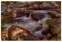 Smokey Mountain Stream #2