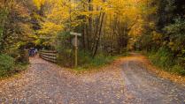 Autumn on the Bike Trail
