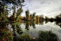Autumn on Water