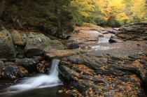 Little Autumn Falls