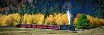 Fall Colors -  New Mexico & Colorado