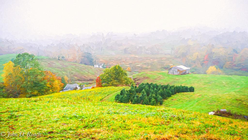 Misty Morning on the Farm