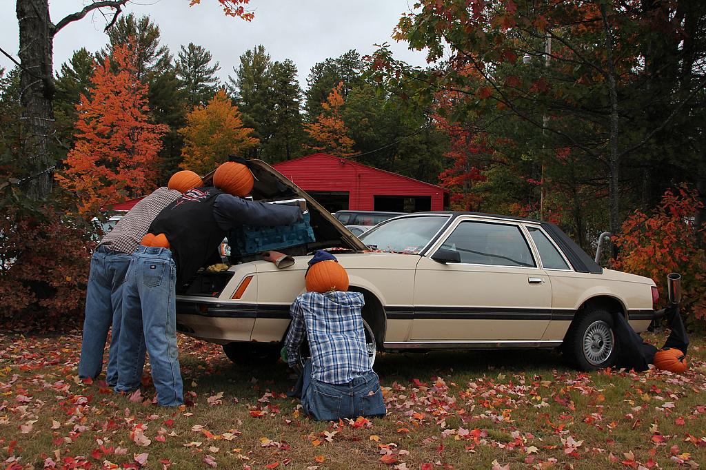 Pumpkin Mechanics