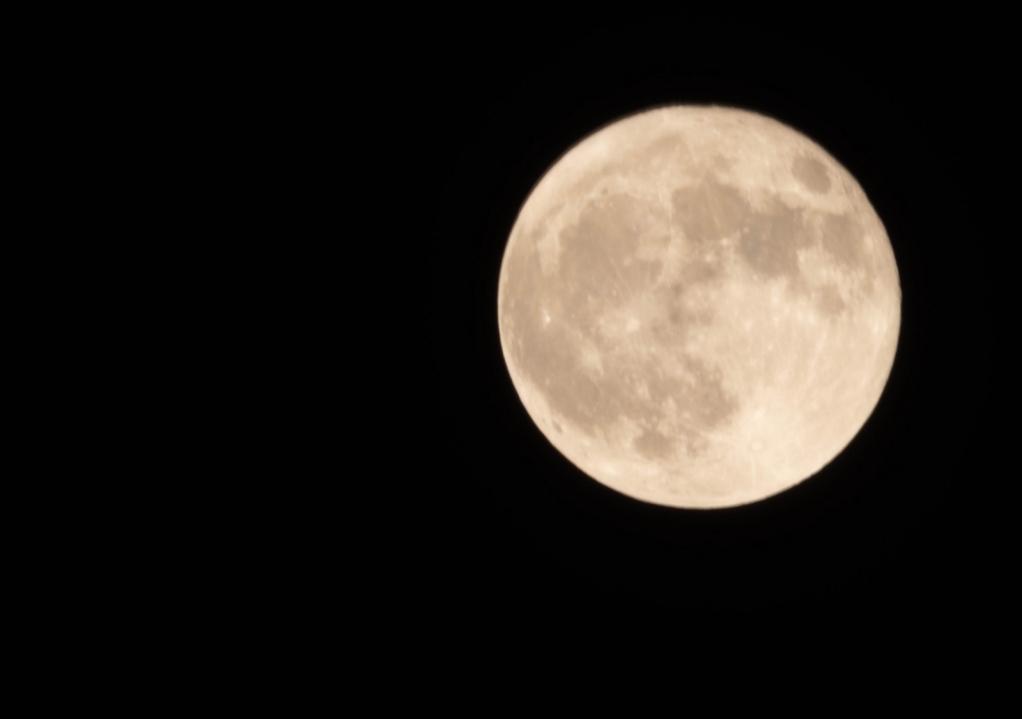 Blue Moon of Halloween