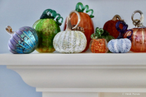 Posh Pumpkins