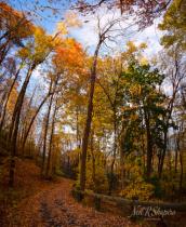 Mohawk-Hudson Fall Beauty