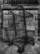 ~ ~ GROCERY CART ~ ~