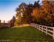 Fences, Grass and Autumn Light