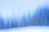 Presence Of Blue