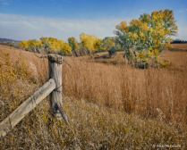 Loess Hills Fence Post