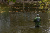 The Lone Fisherman . . .