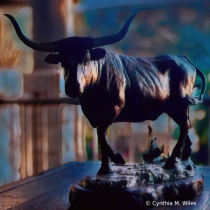 Texas Longhorn in Bronze