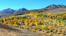 Autumn on the east slope of the Sierra Nevada