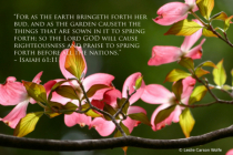 As the Earth in Spring