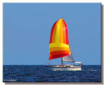 I Would Rather Be Sailing