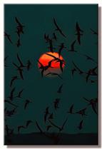 Black Skimmers At Last Sun ( My Lost Files )