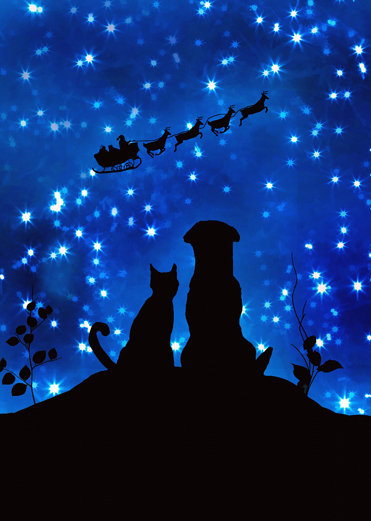 Happy Christmas Eve!