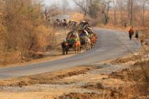 The Village Cart Tour.