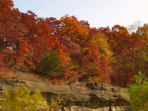 More From Ledges State Park
