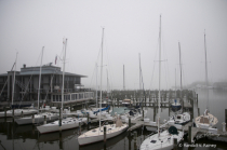 A Misty Morning in Annapolis