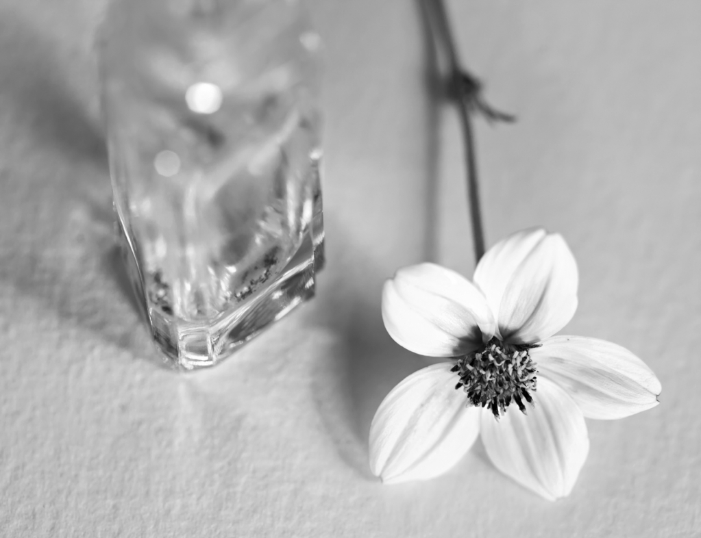 Flower with Bottle