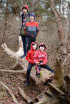 Four Grandsons In The Woods