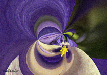 Purple Passion Abstract