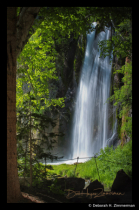 Lil Spearfish Falls Emerging from the Trees
