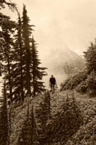 Mt Baker Wilderness