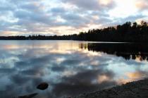 Reflections at Robbins Pond