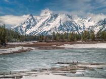 Big Thaw in Coulter Bay, Teton NP